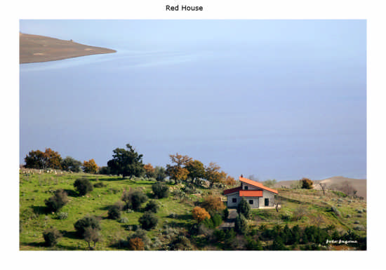 Red House - Lago pozzillo (3738 clic)